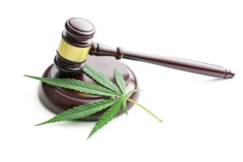 Examination of Trademarks Relating to Cannabis after the 2018 Farm Bill